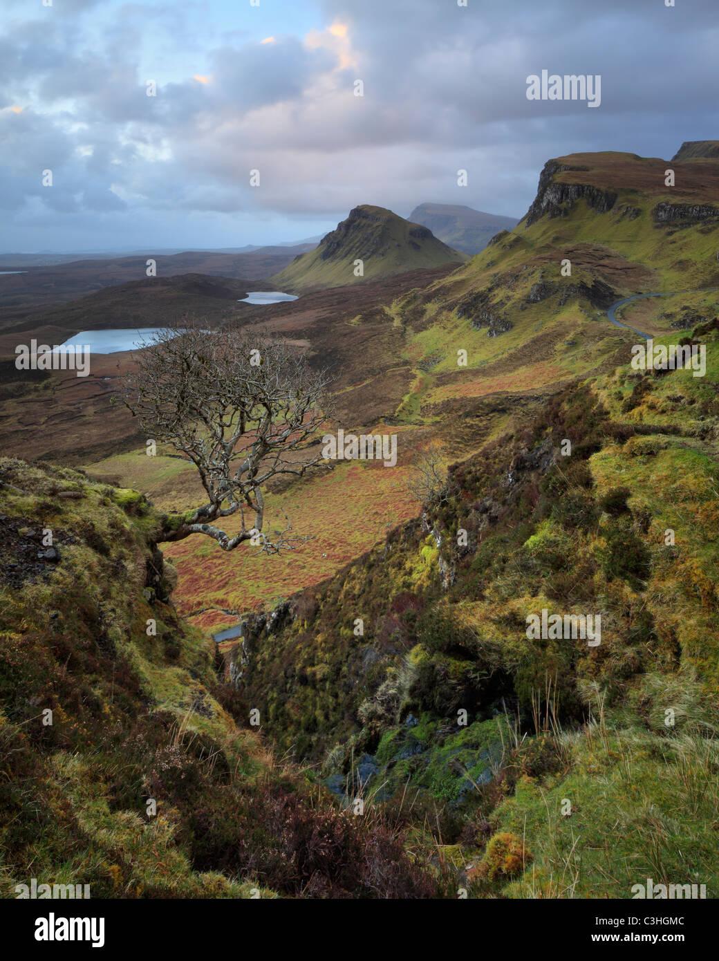 Zeitigen Frühjahr Morgen Blick auf die herrlichen Quirang auf der Isle Of Skye, Schottland Stockbild