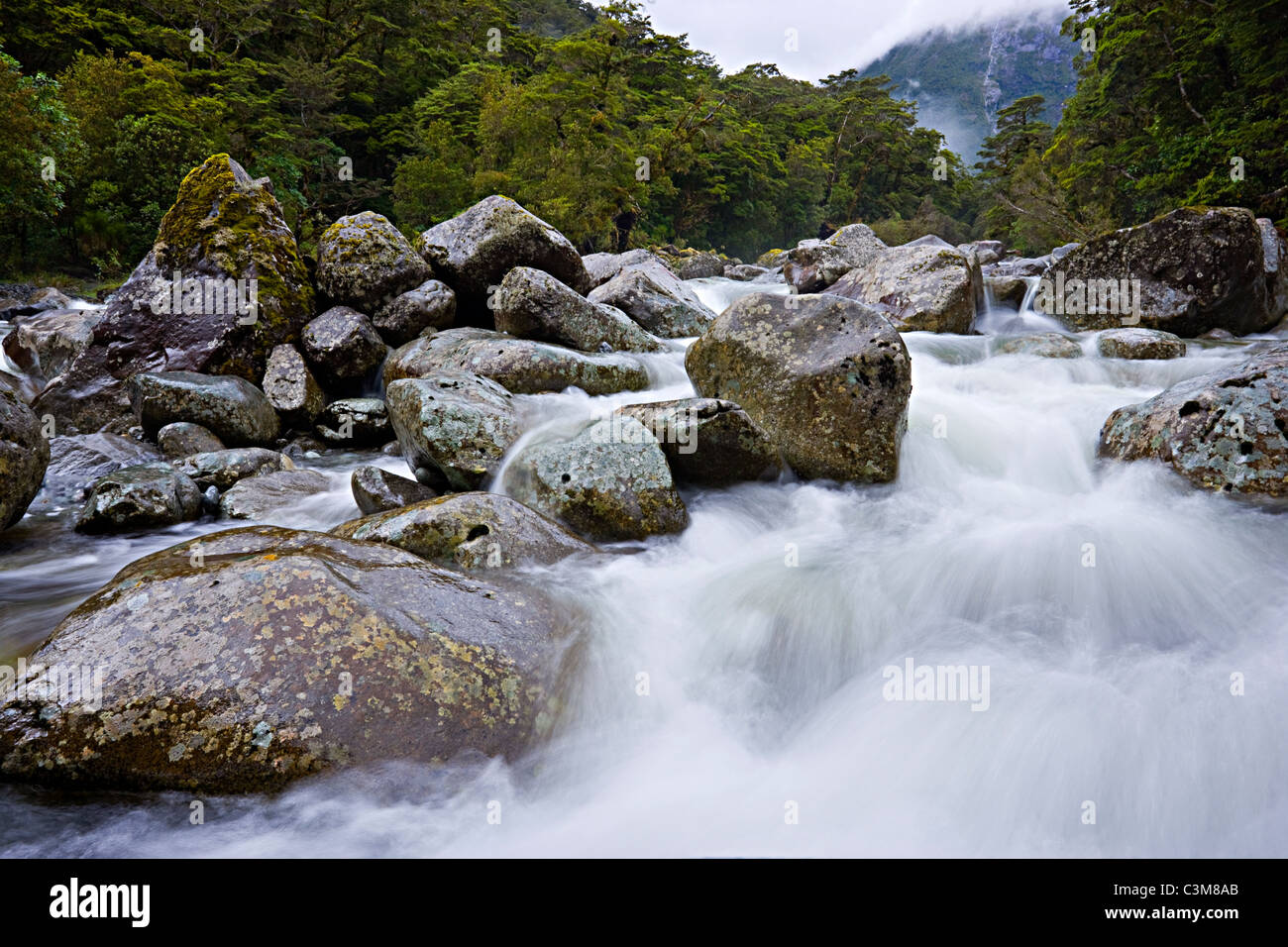 Fluss im Fiordland Nationalpark, Südinsel, Neuseeland Stockbild