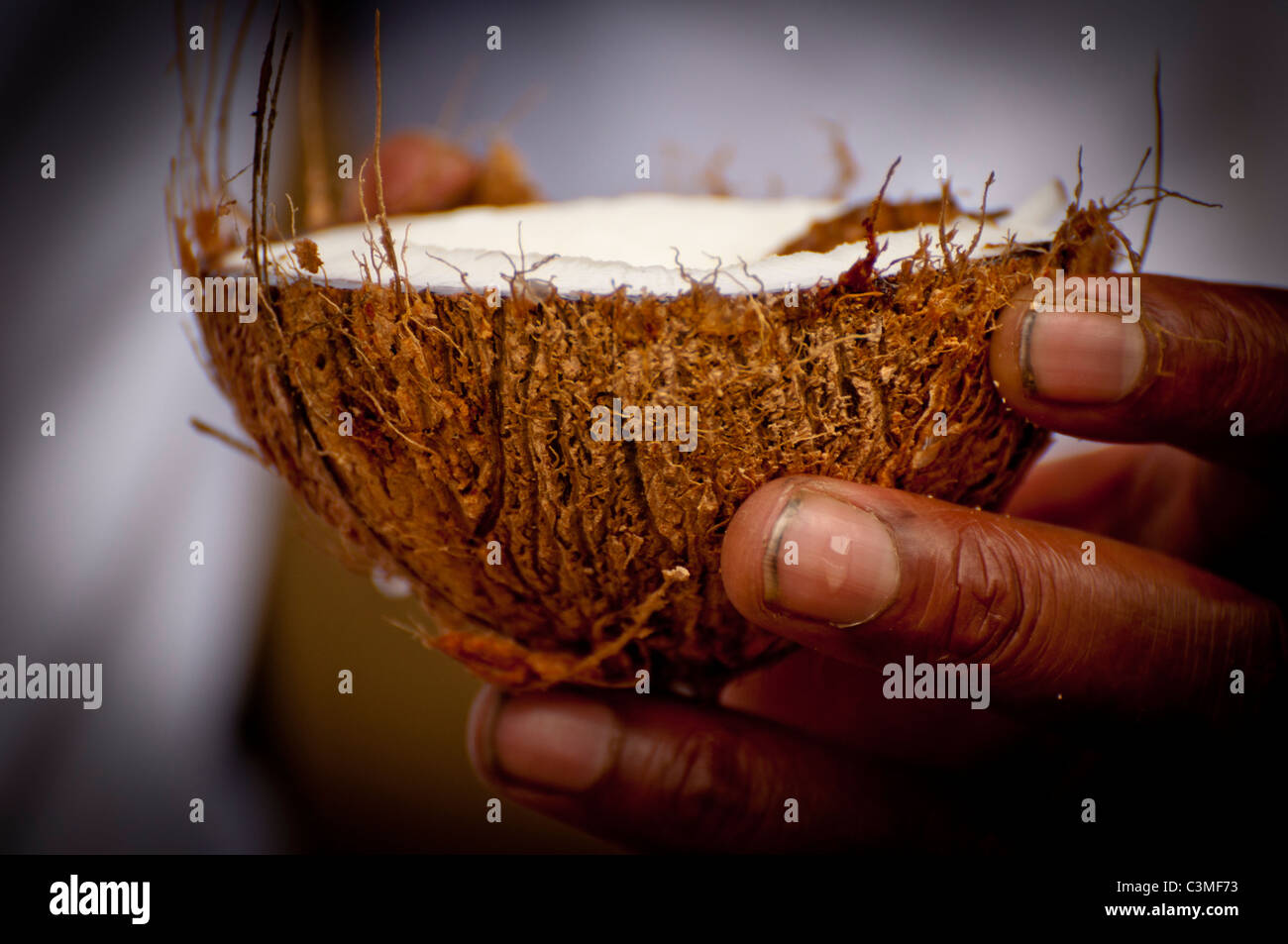 Fidschi Kellner servieren frisch geknackt Kokosmilch, Malolo Resort, Mamanucas-Inseln, Fidschi Stockbild