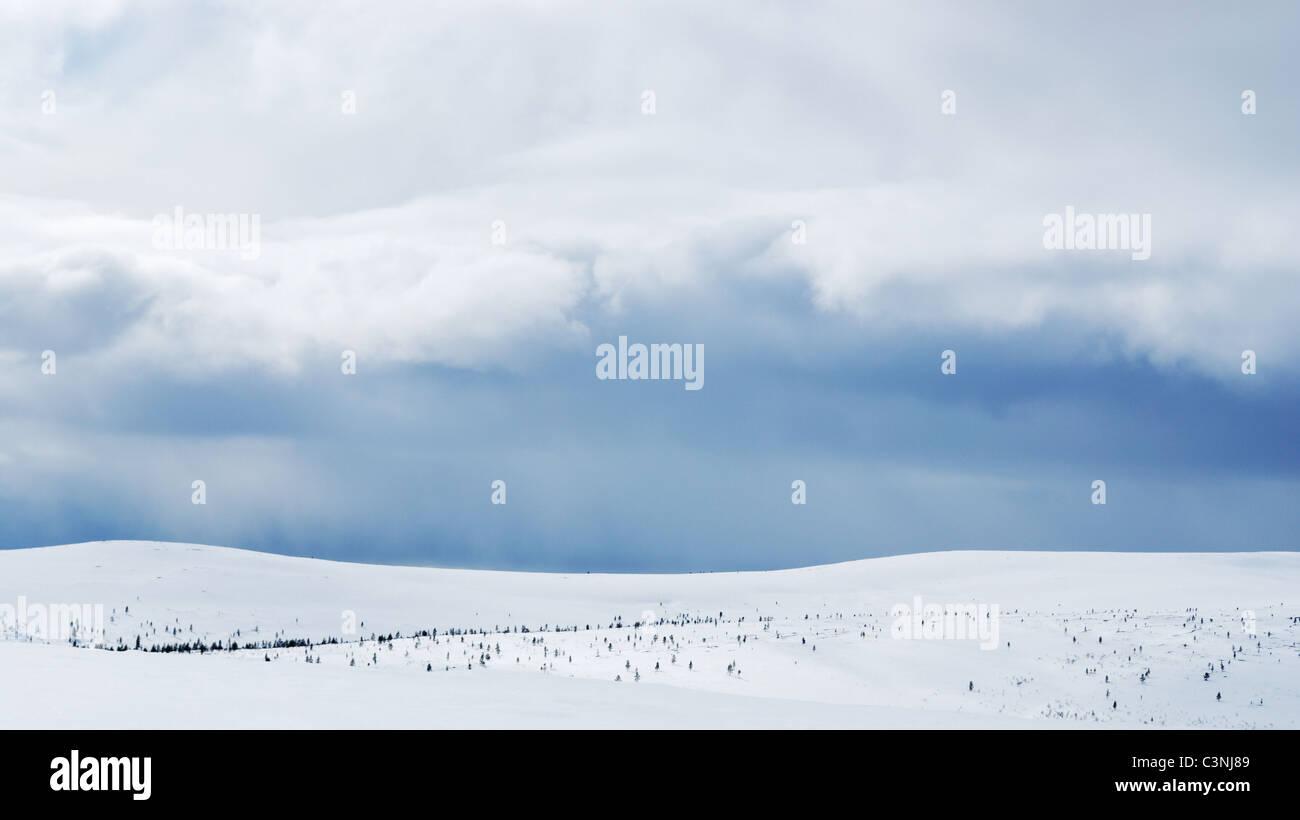 Verschneite Wildnis Landschaft, UKK Nationalpark, Saariselkä, Inari, finnische Lappland Stockbild