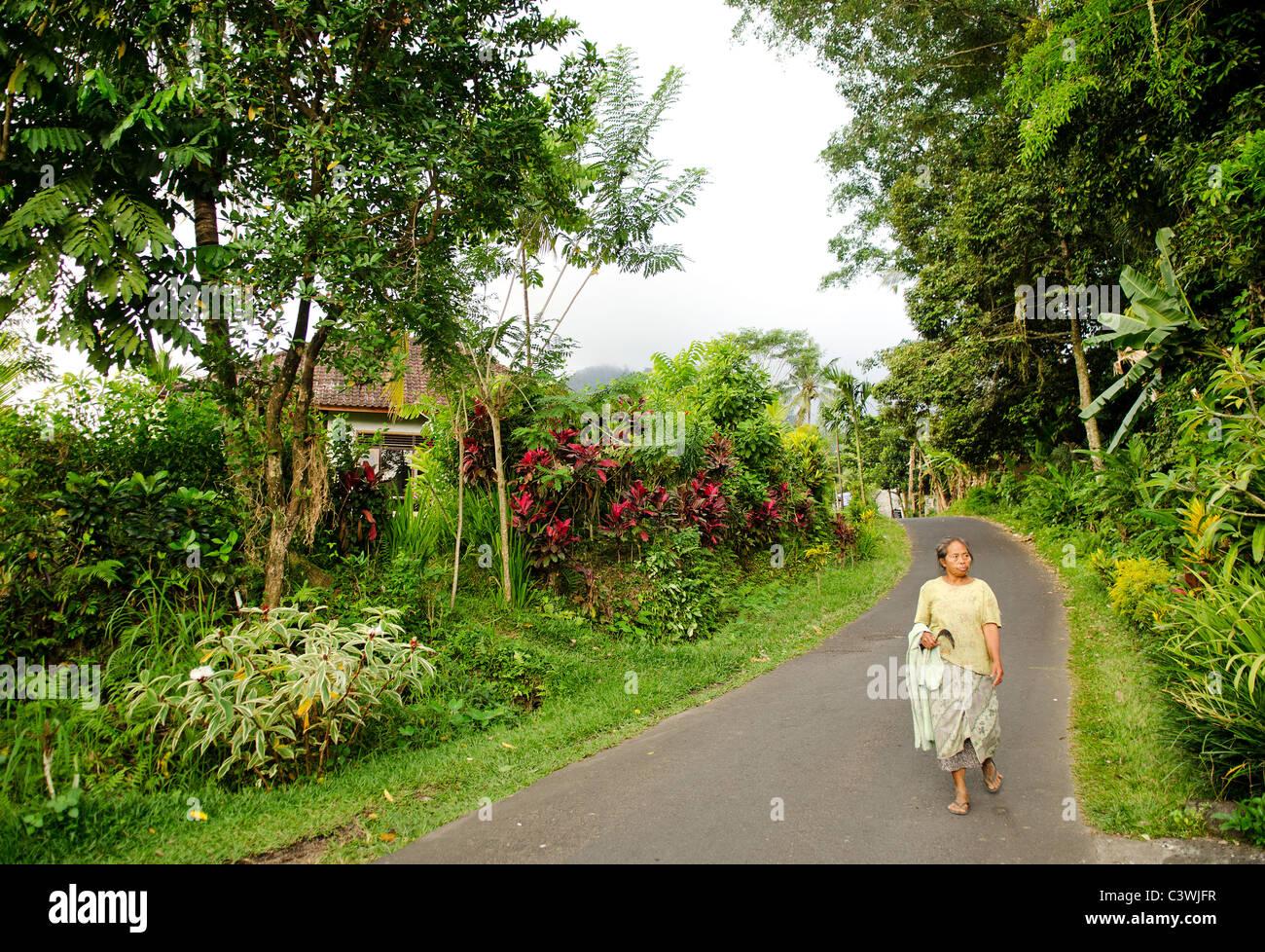 Frau im ländlichen Bali Indonesien Stockbild