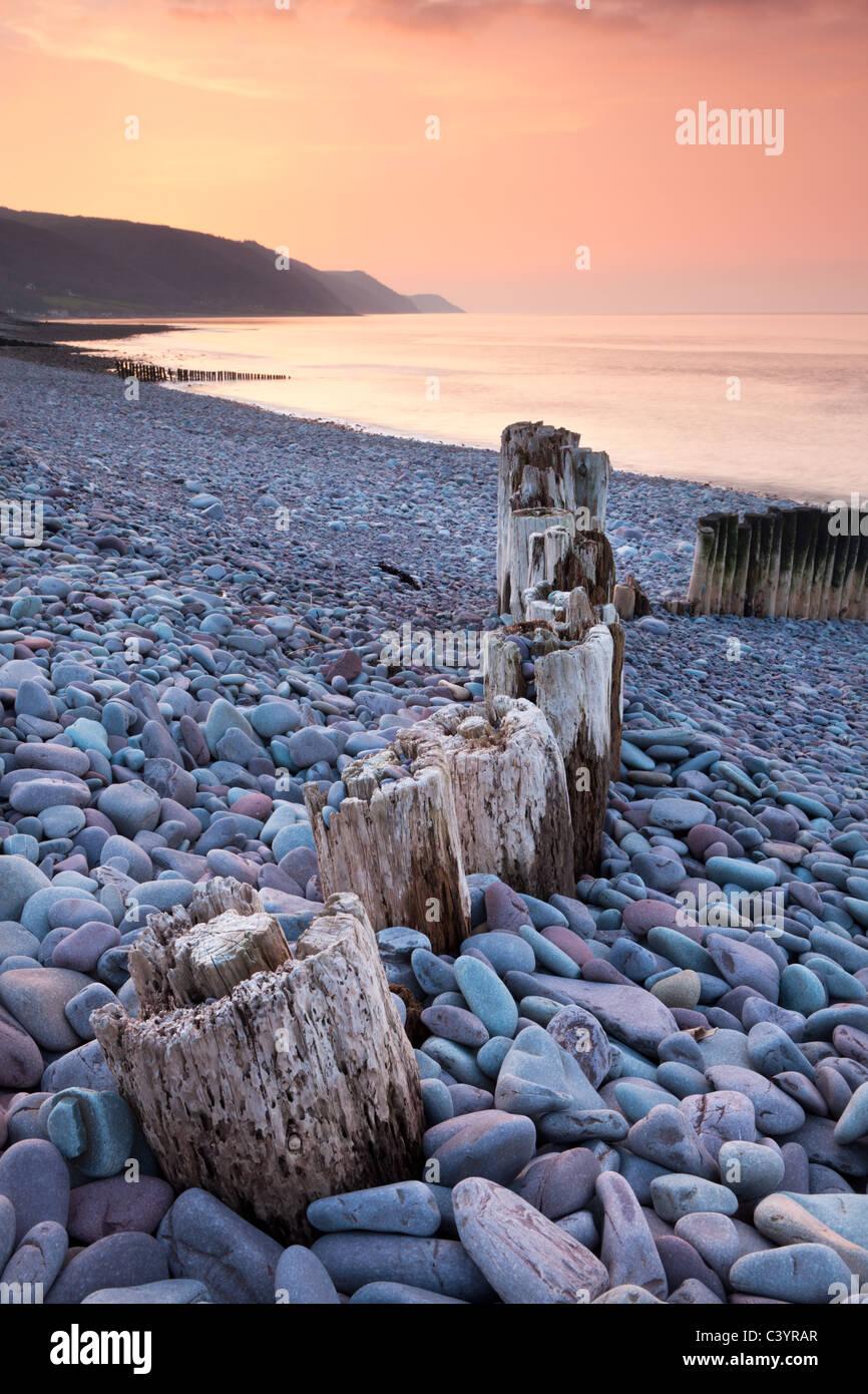 Verwitterte Holz Buhne am Bossington Strand bei Sonnenuntergang, Exmoor Nationalpark, Somerset, England. Frühling Stockbild
