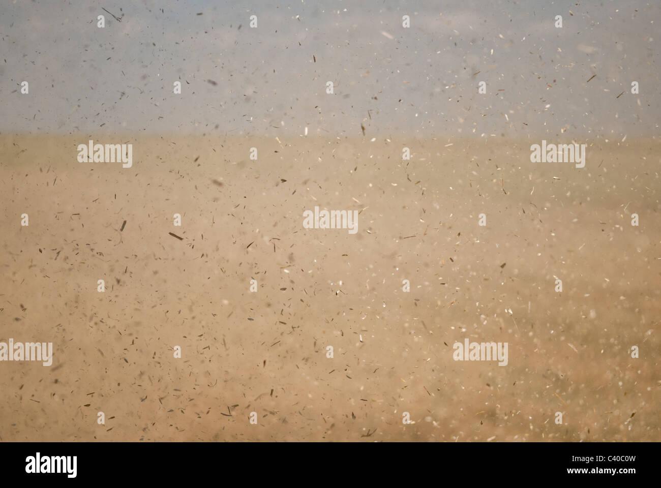 Staubpartikel, in die Luft geworfen, durch eine Ernte kombinieren. Stockbild