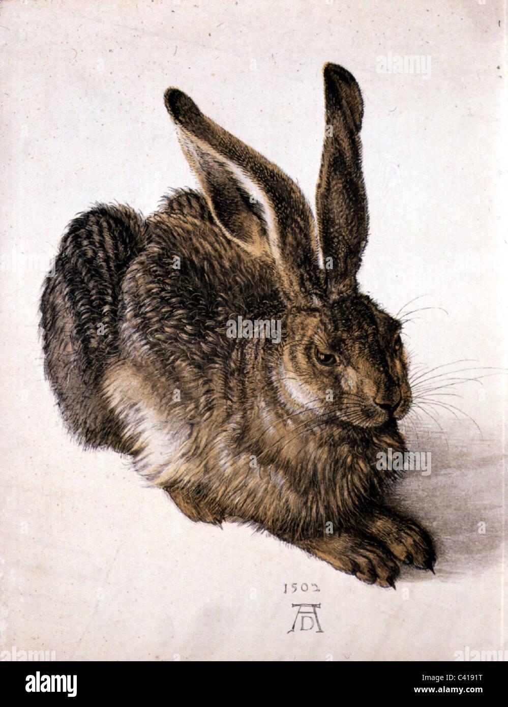 """Bildende Kunst, Dürer, Albrecht (1471-1528), """"Feldhase"""" (Young Hare), Aquarell, 1502, Albertina, Stockbild"""