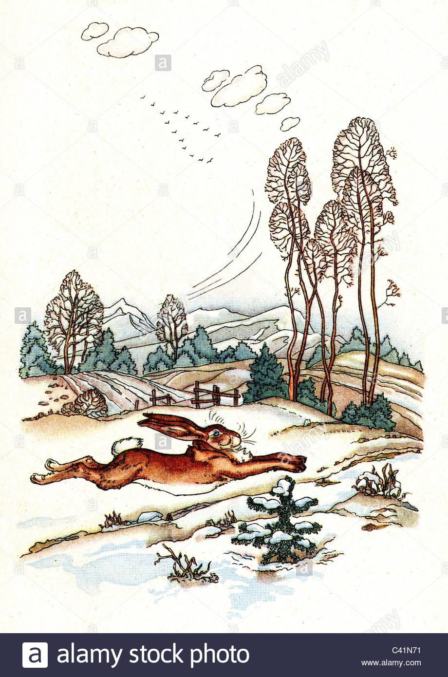Andersen Der Tannenbaum.Literatur Märchen Der Tannenbaum Von Hans Christian Andersen