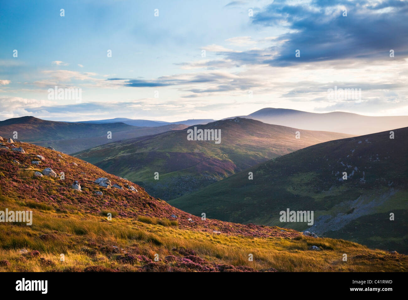 Abend in die Wicklow Mountains, County Wicklow, Irland. Stockbild