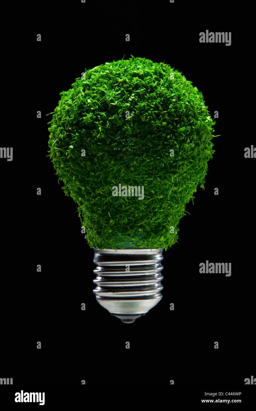 Grünen Rasen bedeckt Glühbirne Stockbild
