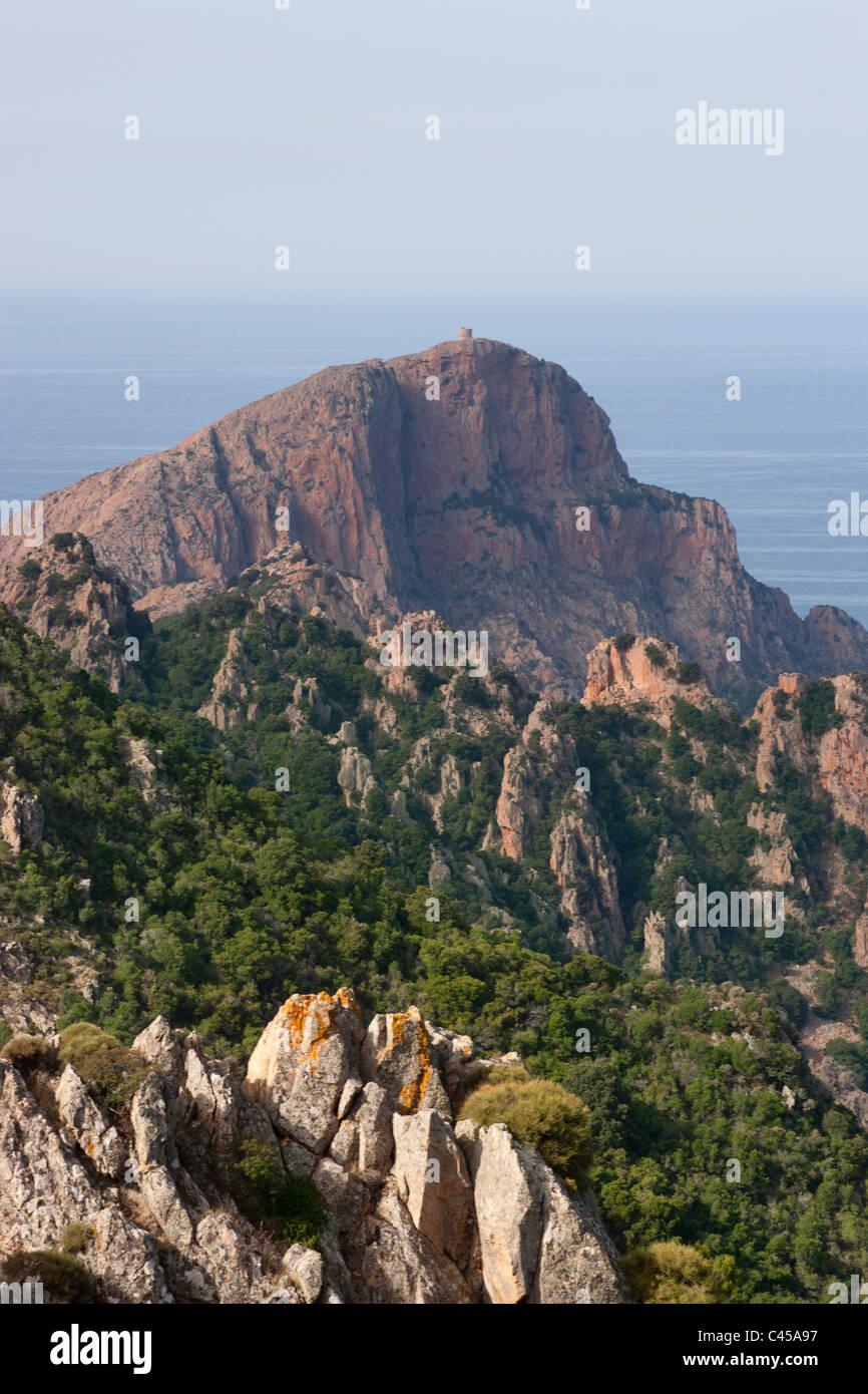 Korsika, Golfe de Porto, Capu Rosso, Blick auf Gipfel in Richtung Meer Stockbild