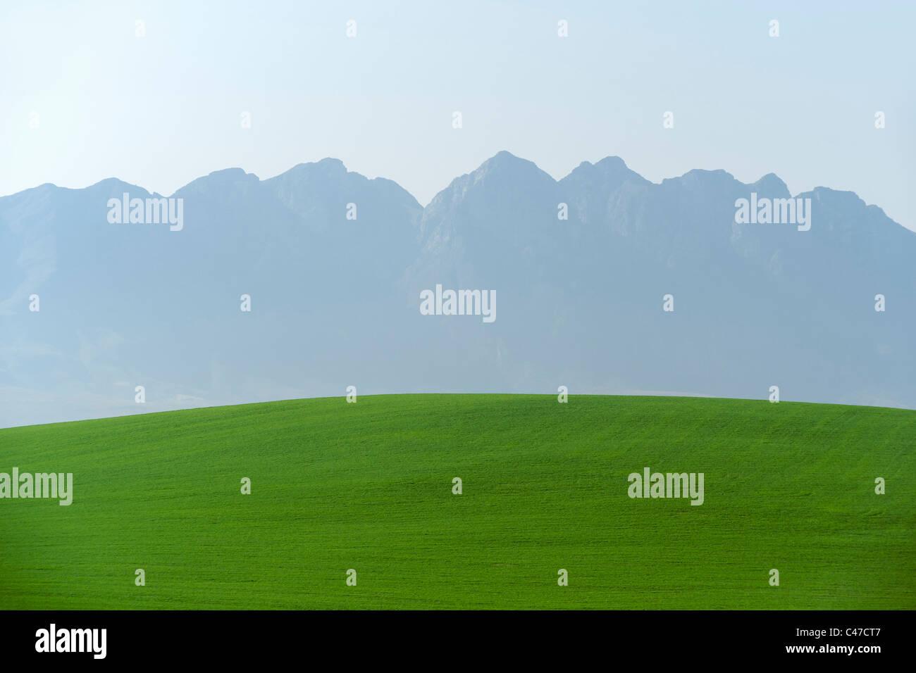 Blick auf landwirtschaftlich genutzten Feldern und die Langeberg Mountain Range von der Autobahn N2 in südafrikanischen Stockbild