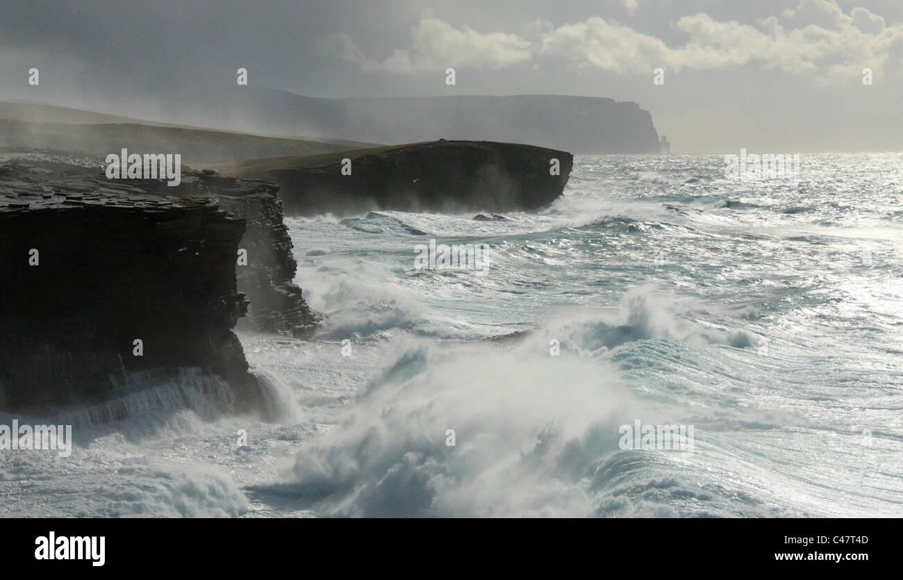 Orkney, Yesnaby Küste Stockbild