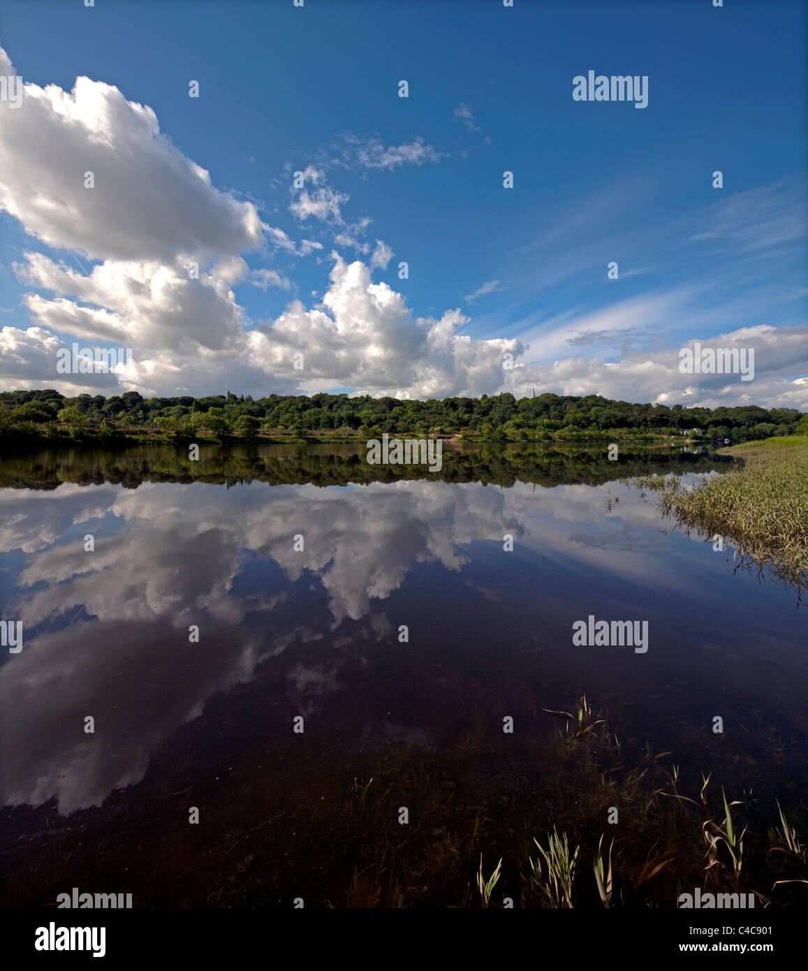 Perfekte Reflexionen an einem Sommertag am Fluss Tyne in der Nähe von Newburn, Newcastle Upon Tyne Stockbild