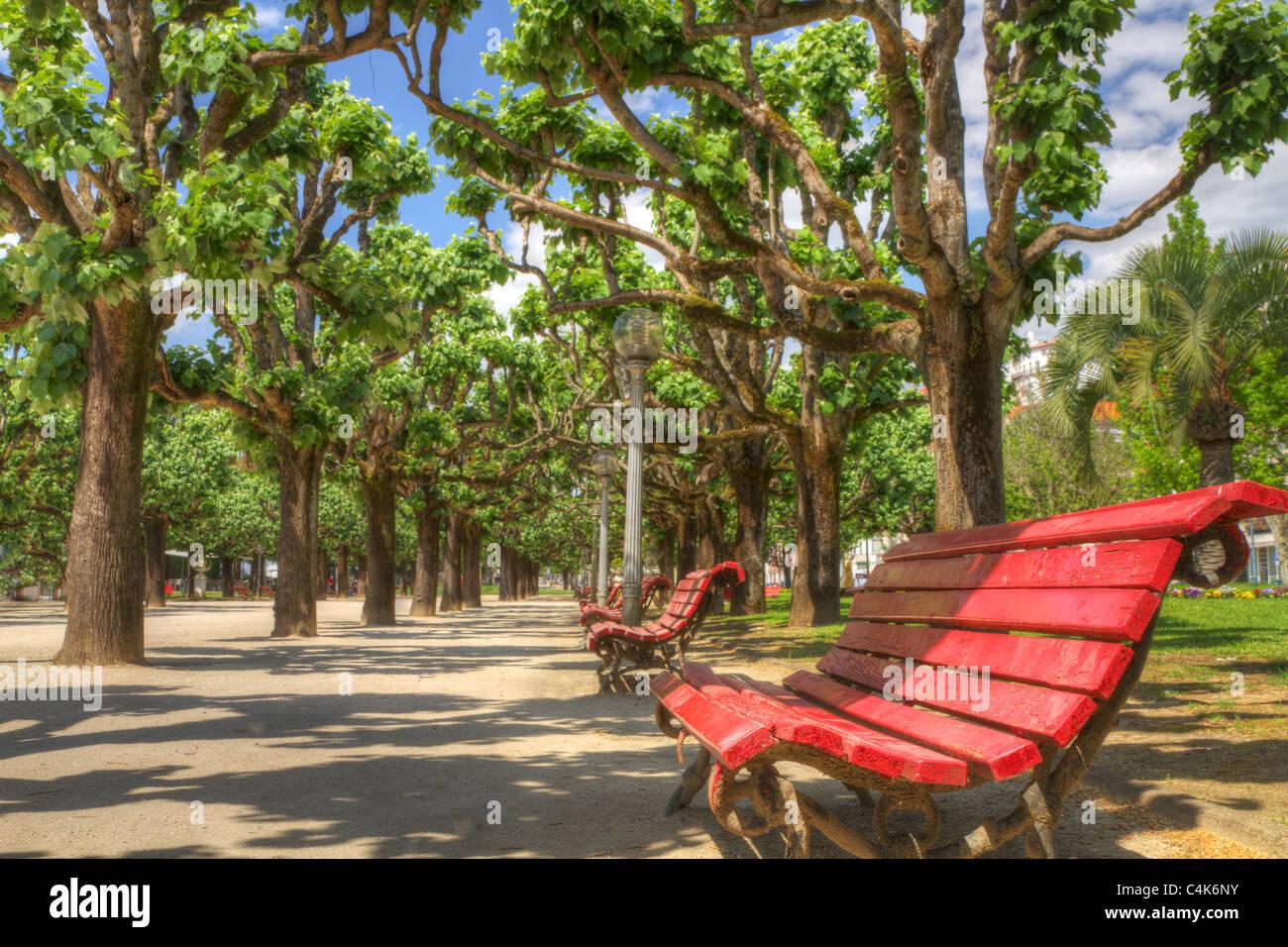 Reihe von roten Holzbänke in einem schönen Park unter dem Schatten der Bäume im Sommer laden zum Stockbild