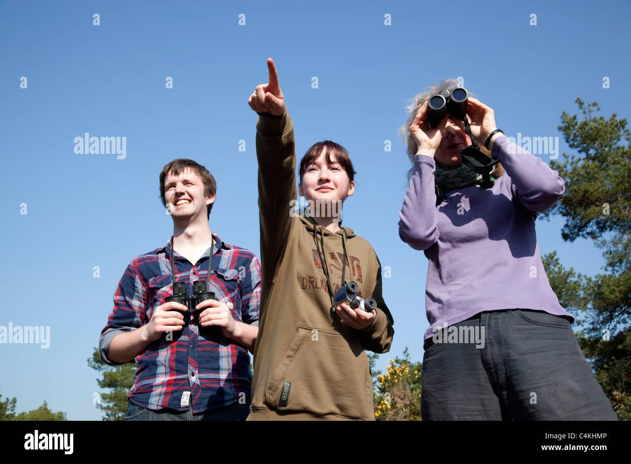 Vögel beobachten; drei Personen; Godolphin; Cornwall Stockbild