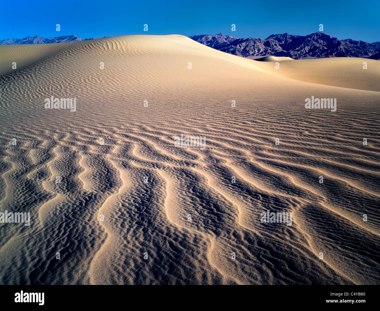 Muster im Sand nach intensiven Sturm. Death Valley Nationalpark, Kalifornien Stockbild