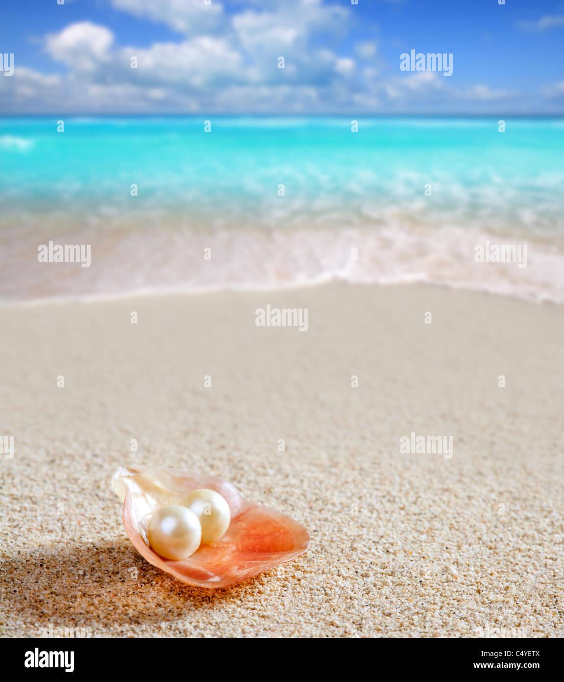 Karibische Perle auf Shell über weißen Sandstrand von einem tropischen türkisfarbenen Meer Stockbild