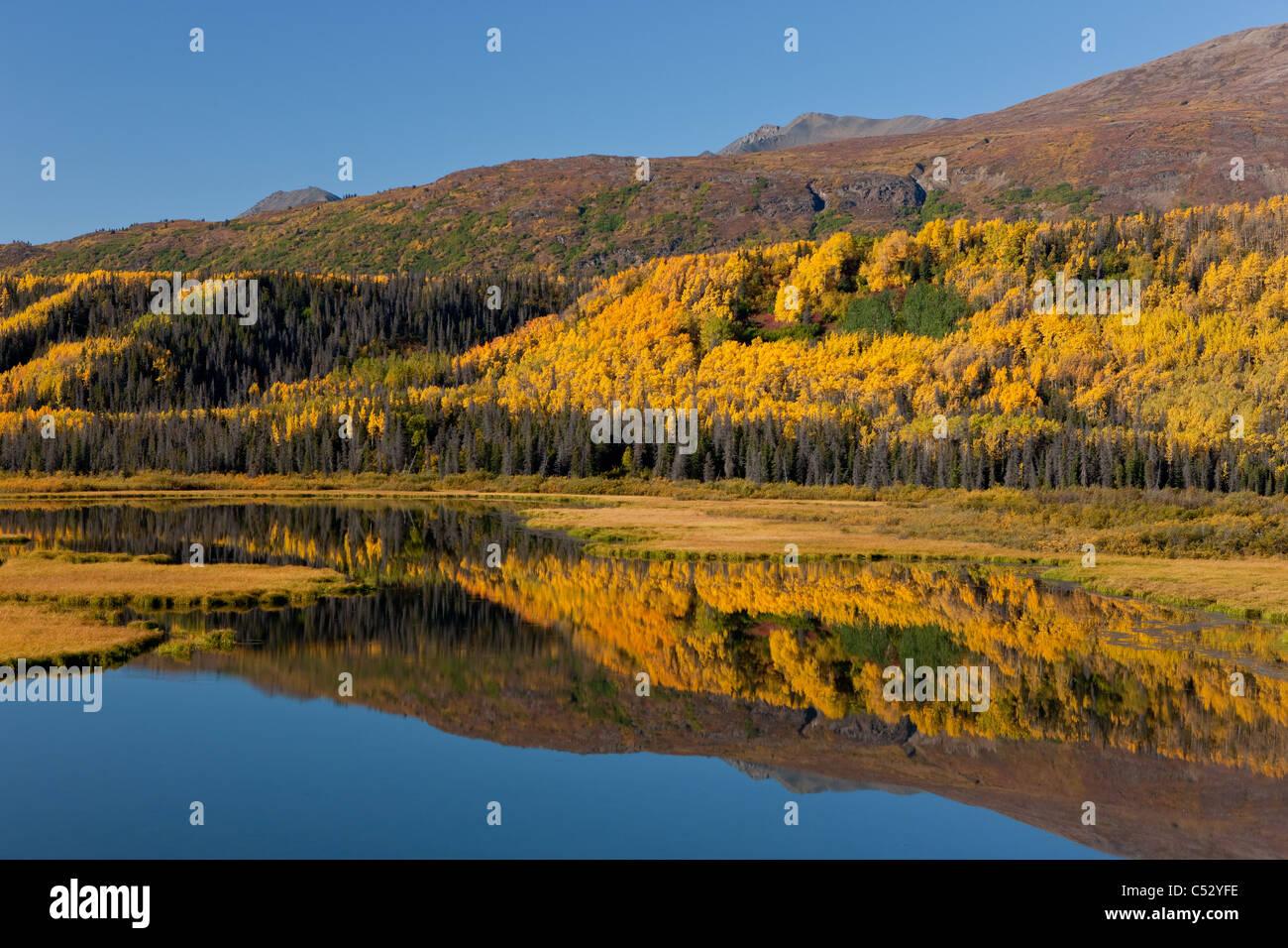 Malerische Aussicht von Feuchtgebieten Herbstfarben entlang des Alaska Highway zwischen Haines und Haines Junction, Stockbild