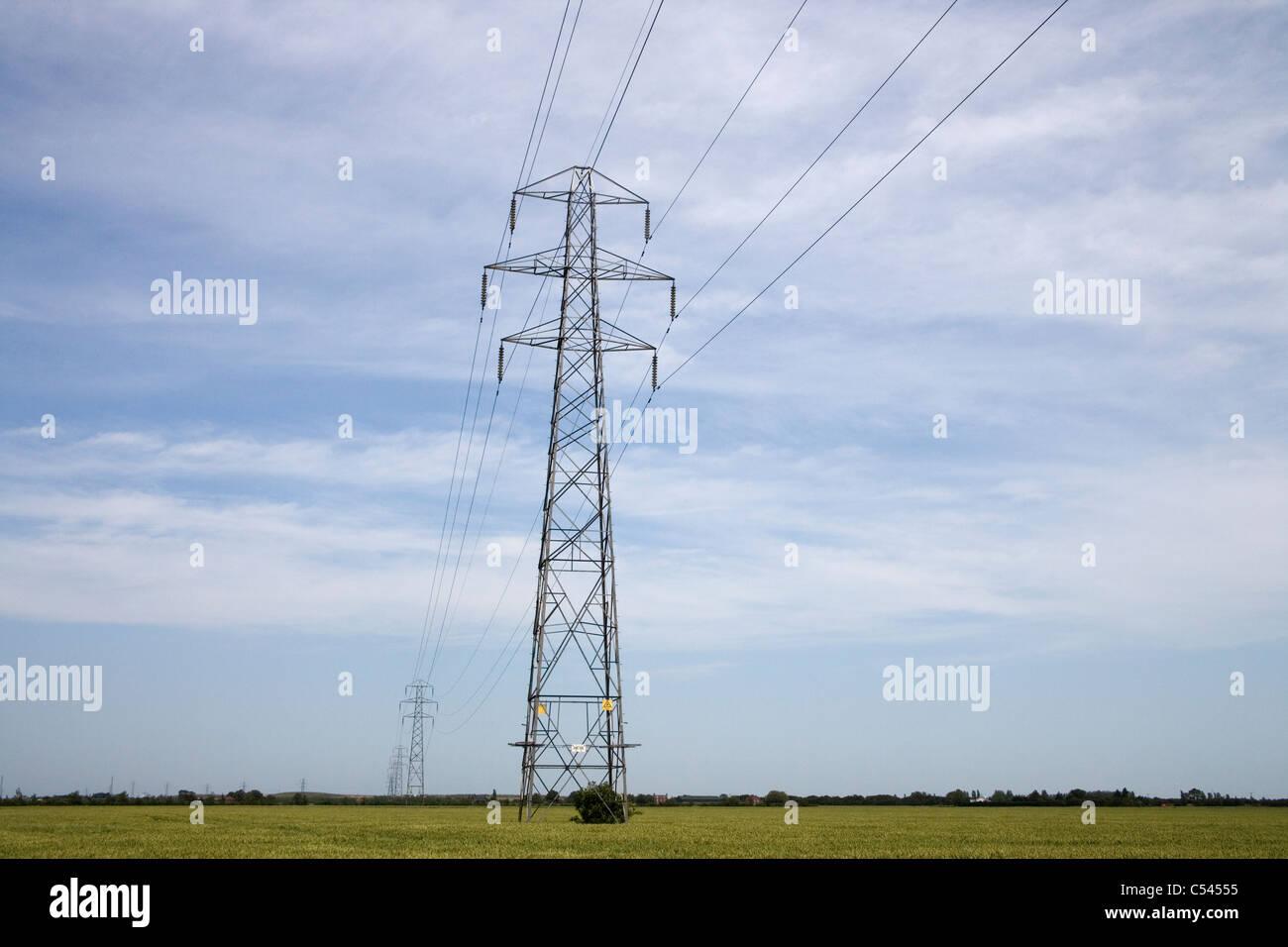 elektrische Energieverteilung über Ackerland in Lincolnshire Stockbild