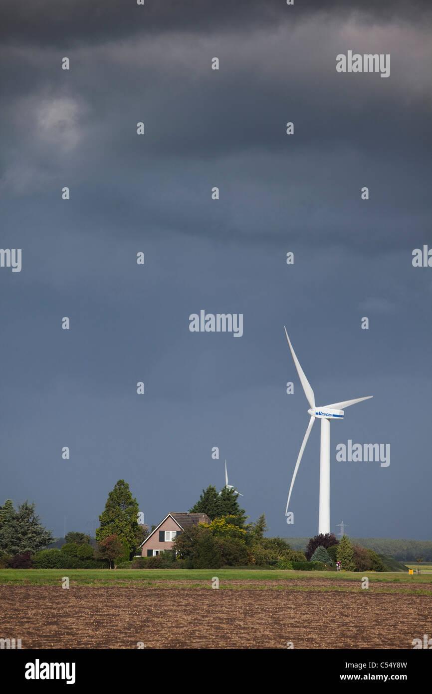 Niederlande, Almere, Wind-Turbinen, Windmühlen und Bauernhof Stockbild