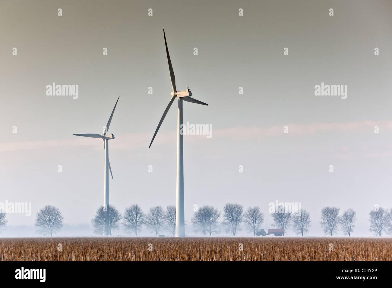 Niederlande, Lelystad, Windkraftanlagen und Traktor Stockbild