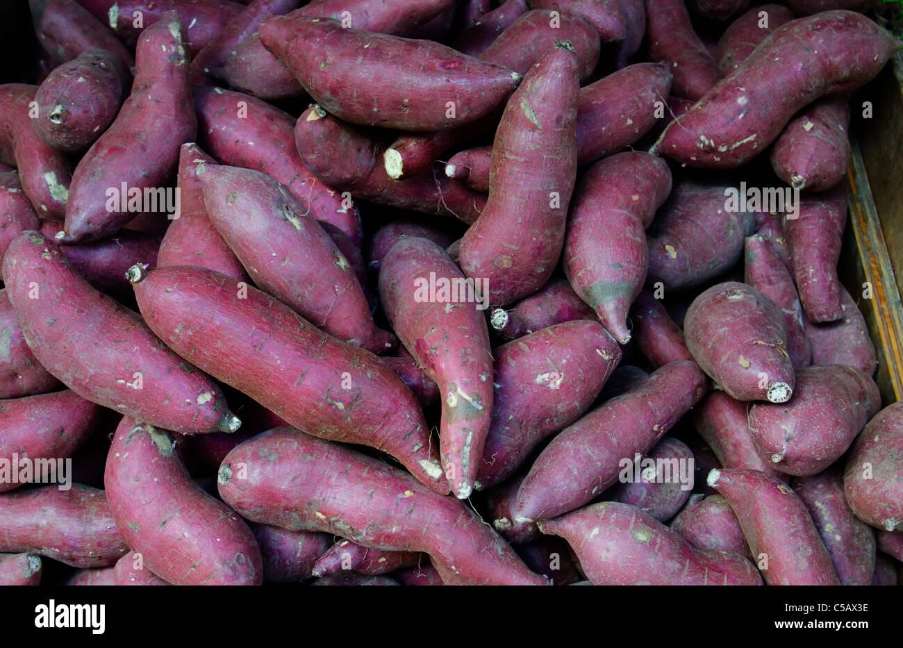 Rote Haut Süßkartoffeln in einen Bauernmarkt Stockbild