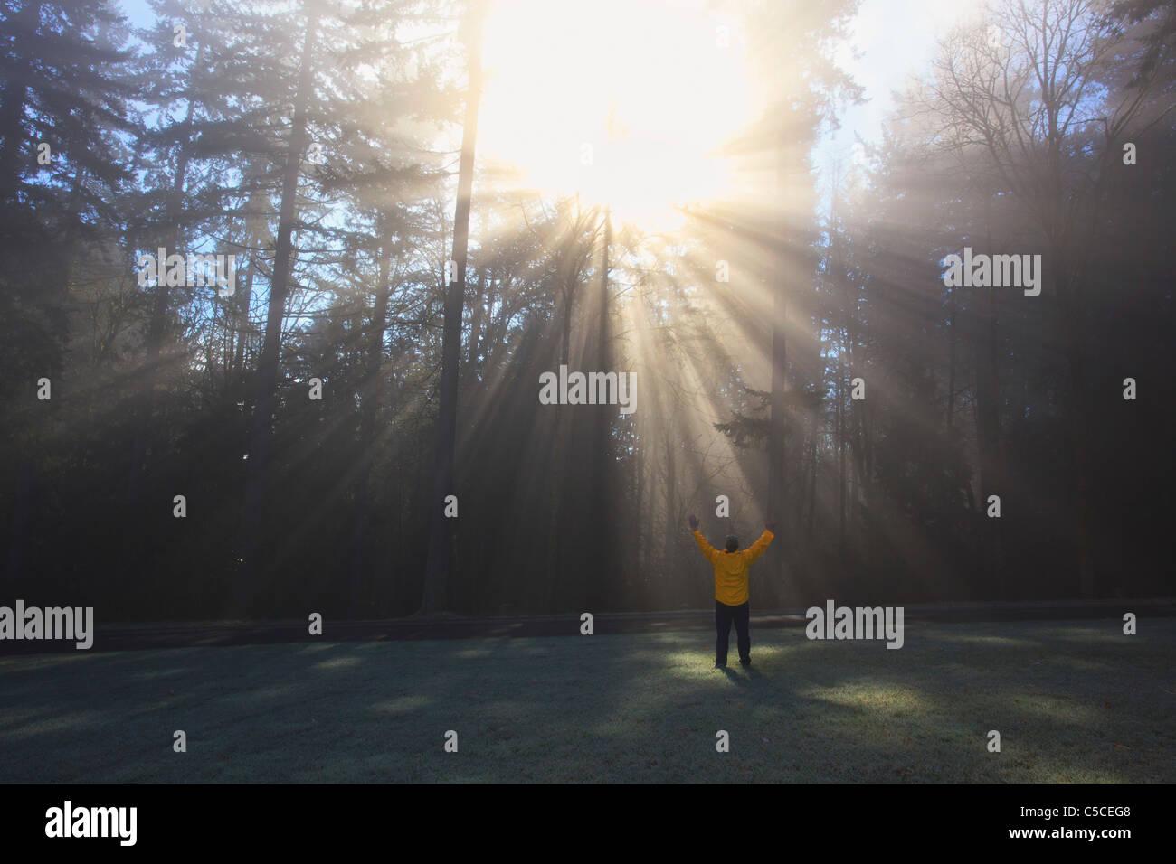 Eine Person wirft ihre Arme, die Sonne scheint durch Morgennebel und Bäume; Happy Valley, Oregon, Vereinigte Stockbild