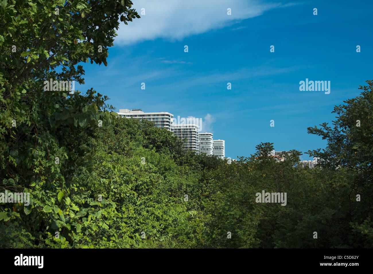 Blick auf MArco Island Eigentumswohnungen von Tigertail Beach Stockbild