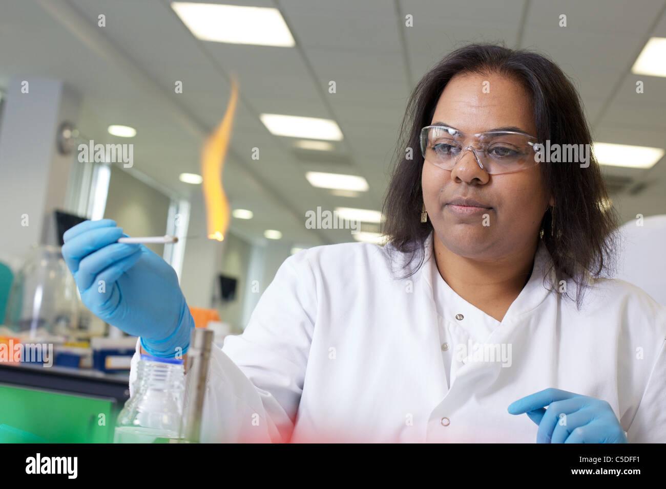 Labor-Techniker chemische Tests an der Leeds Metropolitan University.Bio Chemielabors. Stockbild