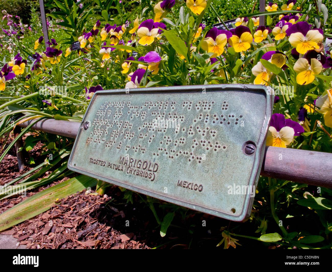 Schilder in Blindenschrift leiten Sehbehinderte bei der Alice Recknagel Ireys Duftgarten der Brooklyn Botanic Garden Stockbild
