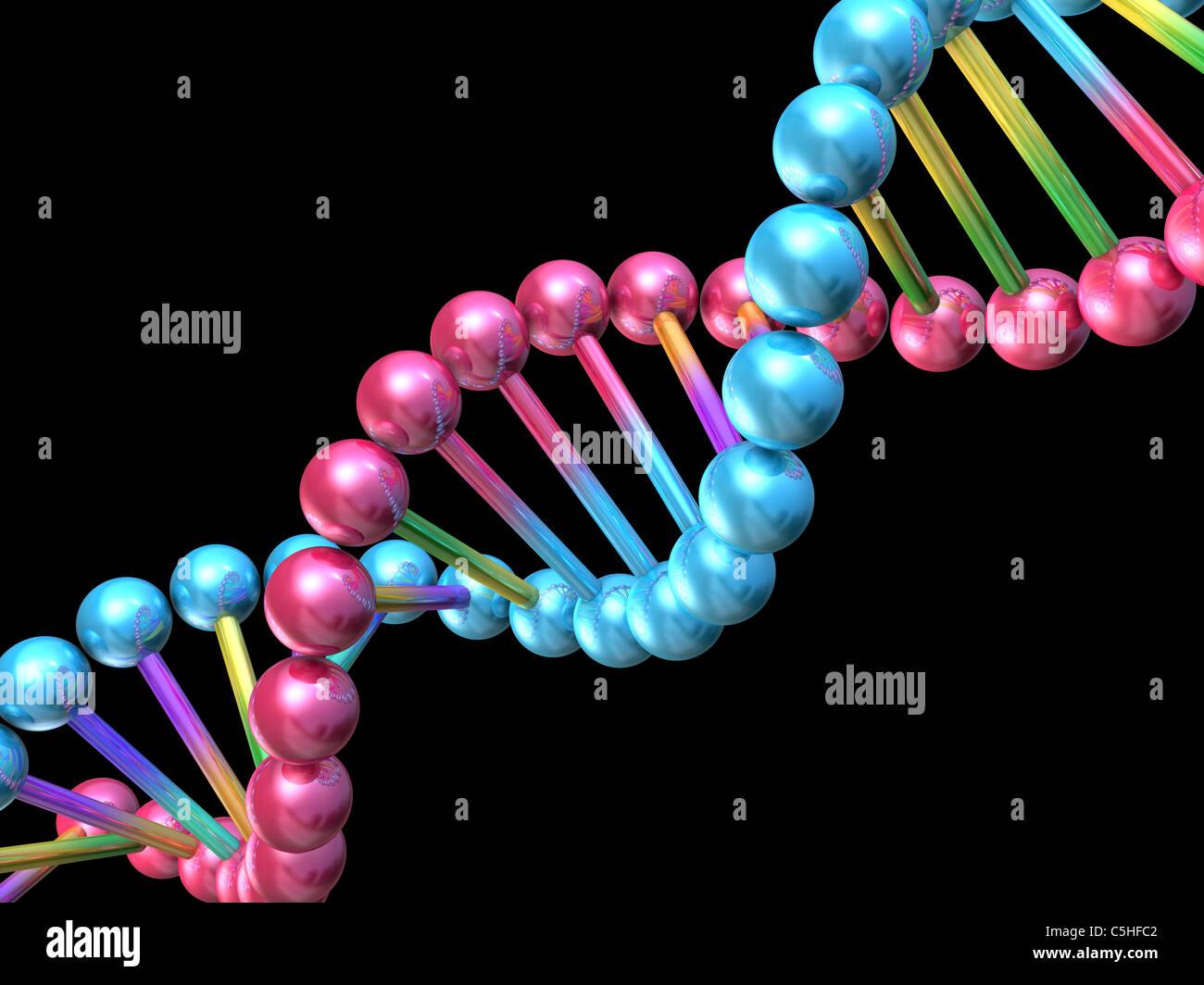 DNA-Molekül, Computer-Grafik Stockbild