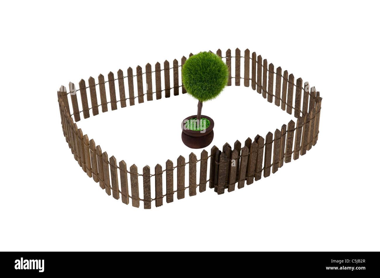 Natur erhalten gezeigt durch einen eingemachten Baum in einem Hof, umgeben von einem Zaun - Pfad enthalten Stockbild