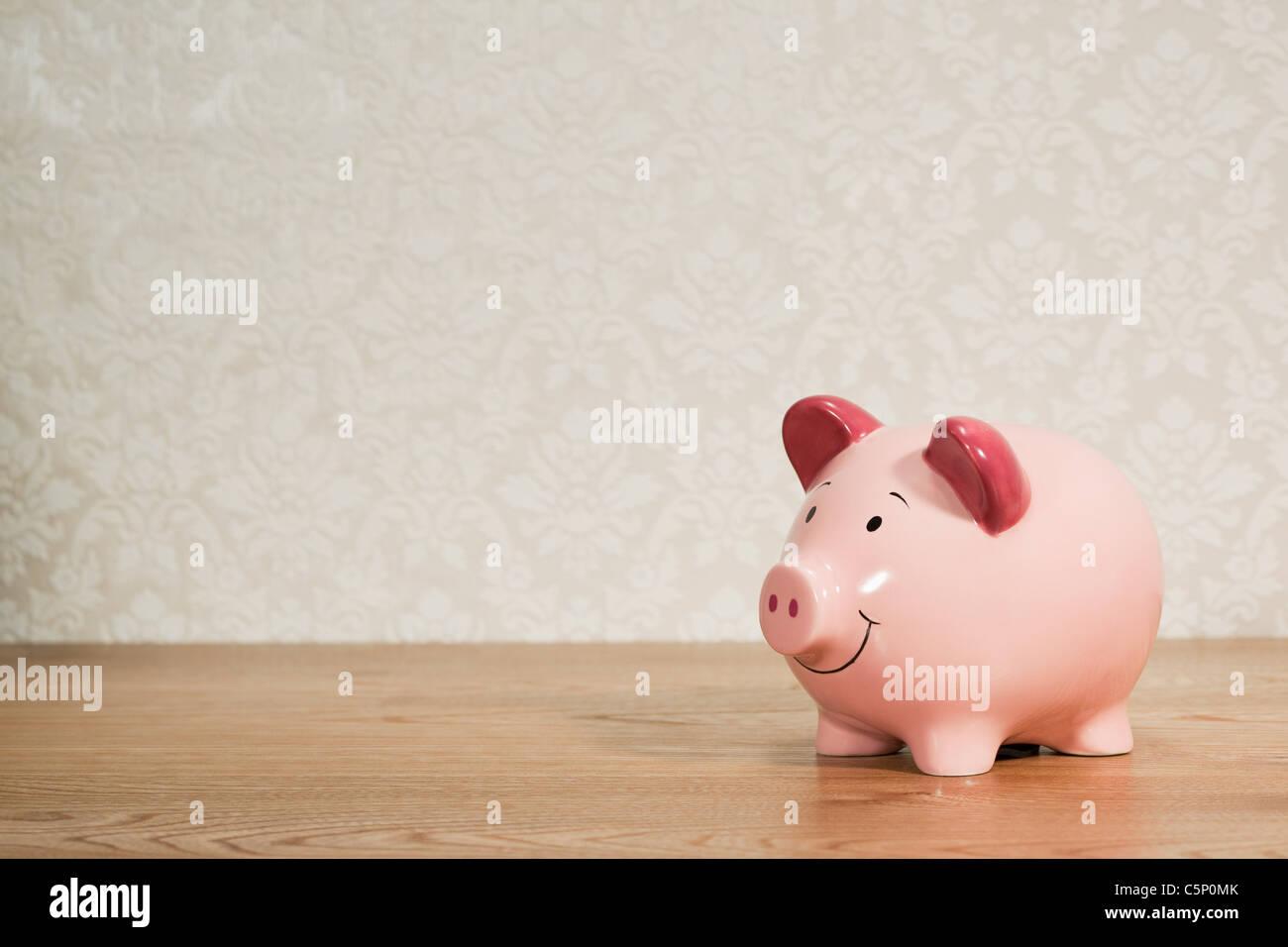 Rosa Schweinchen zurück Stockbild