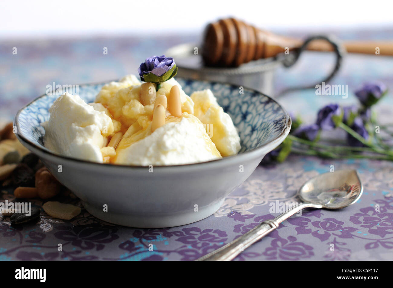 Griechischer Joghurt mit Honig und Pinienkernen Stockbild