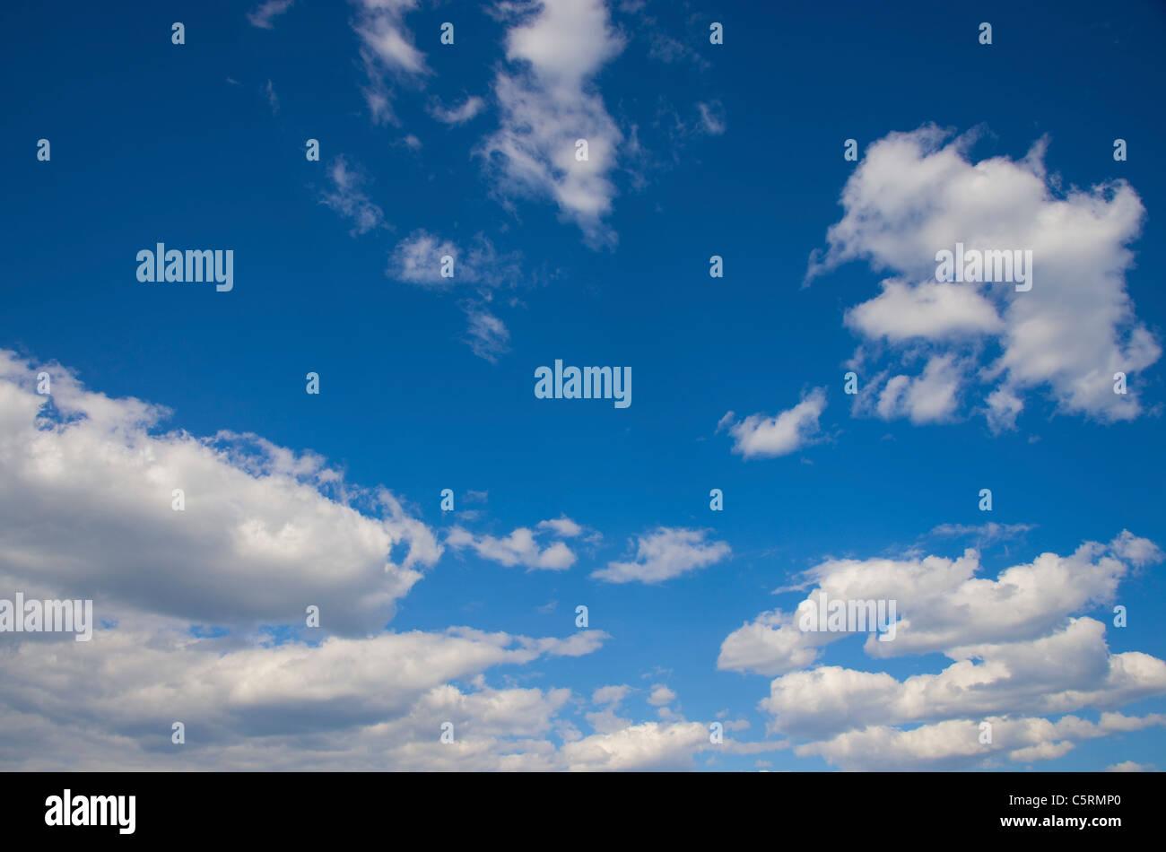 Ein strahlend blauer Himmel mit geschwollenen weißen Wolken Stockbild