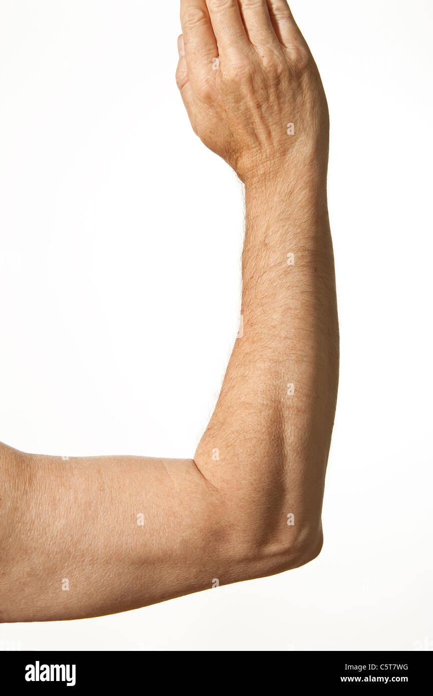 Human Elbow Stockfotos & Human Elbow Bilder - Alamy