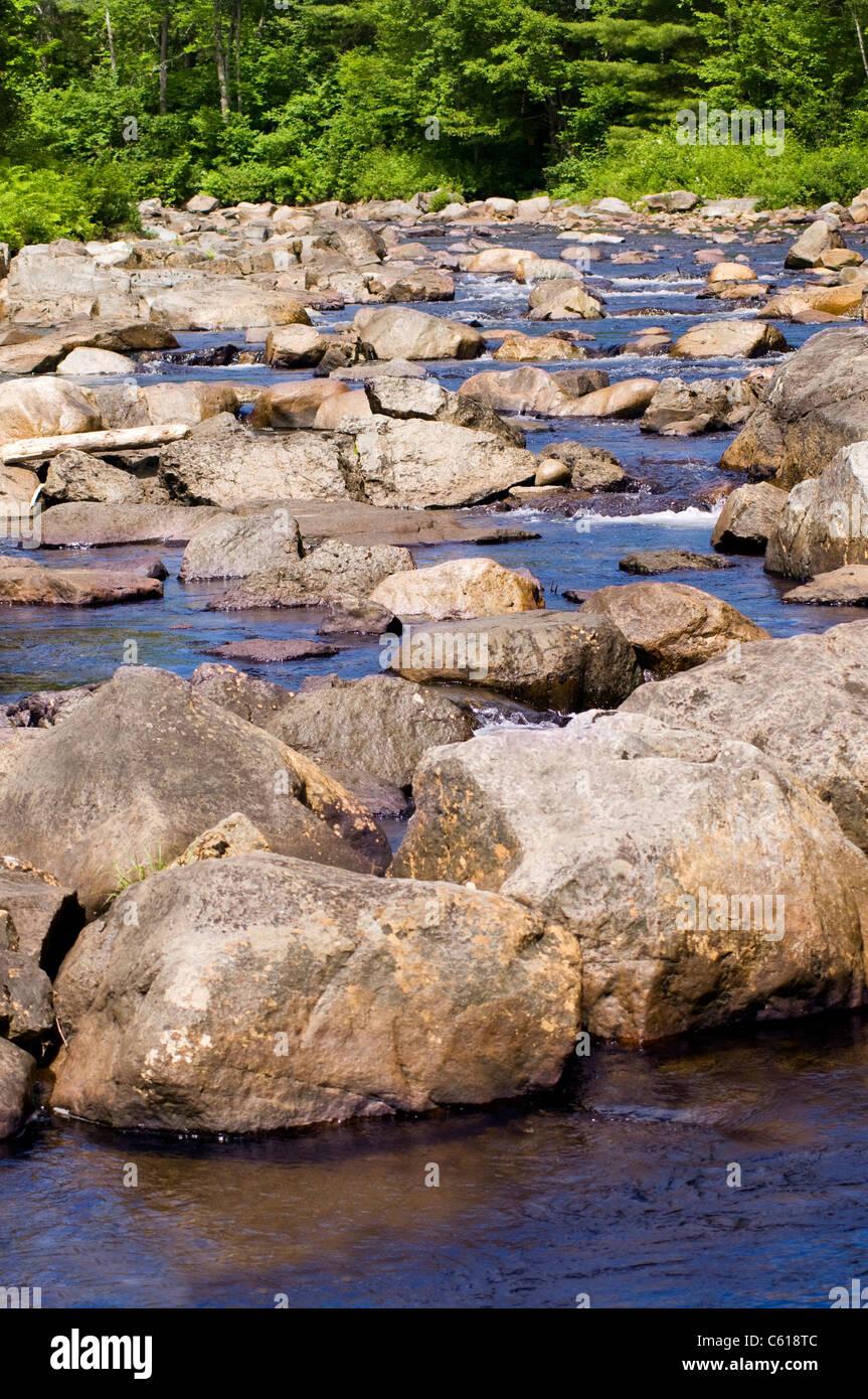 Bewaldeten Stream mit vielen Felsen und plätschernden Wasser Stockbild