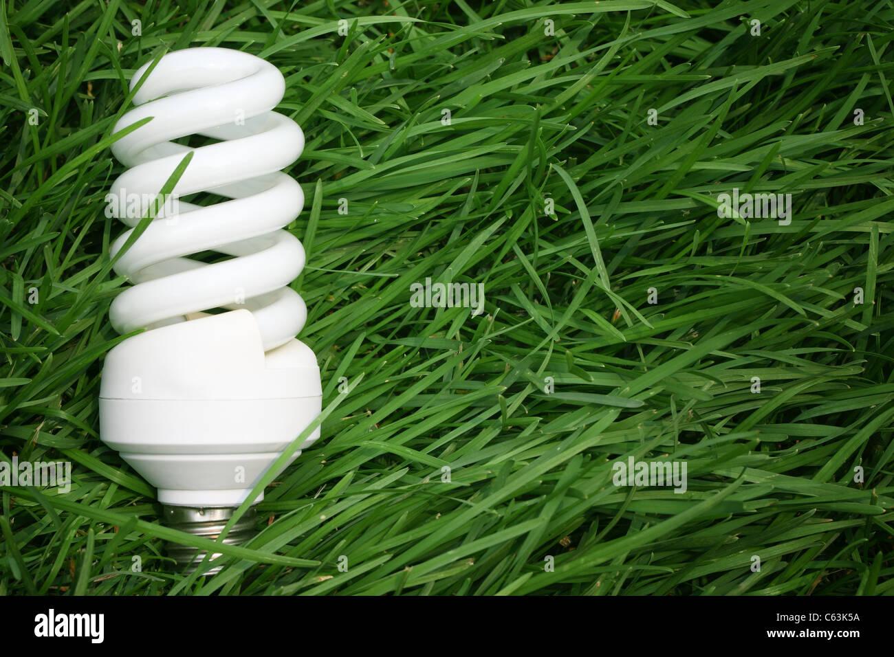 Energiesparlampe auf dem grünen Rasen, Energiesparkonzept. Stockbild