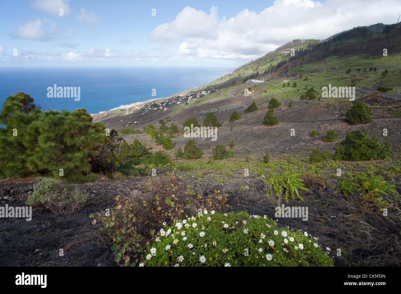 Blick von Vulkan San Antonio Auf sterben Suedkueste, Fuencaliente, Los Canarios, Blick vom Vulkan auf der Südküste Stockbild