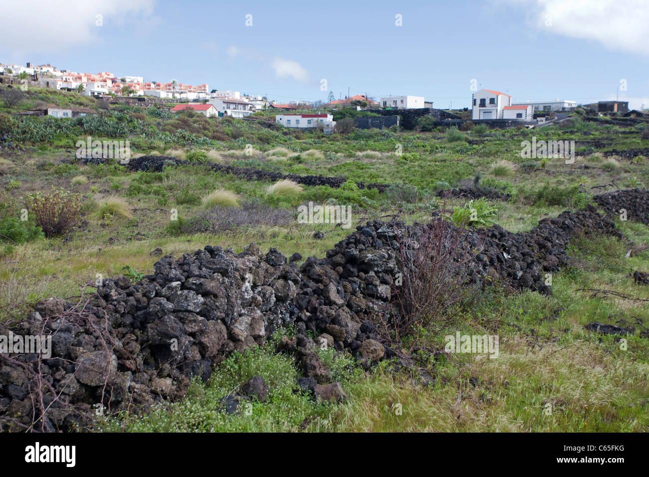Mauer aus Lavasteinen Bei Fuencaliente, Los Canarios, Wand mit vulkanischen Steinen bei Fuencaliente, Los Canarios Stockbild