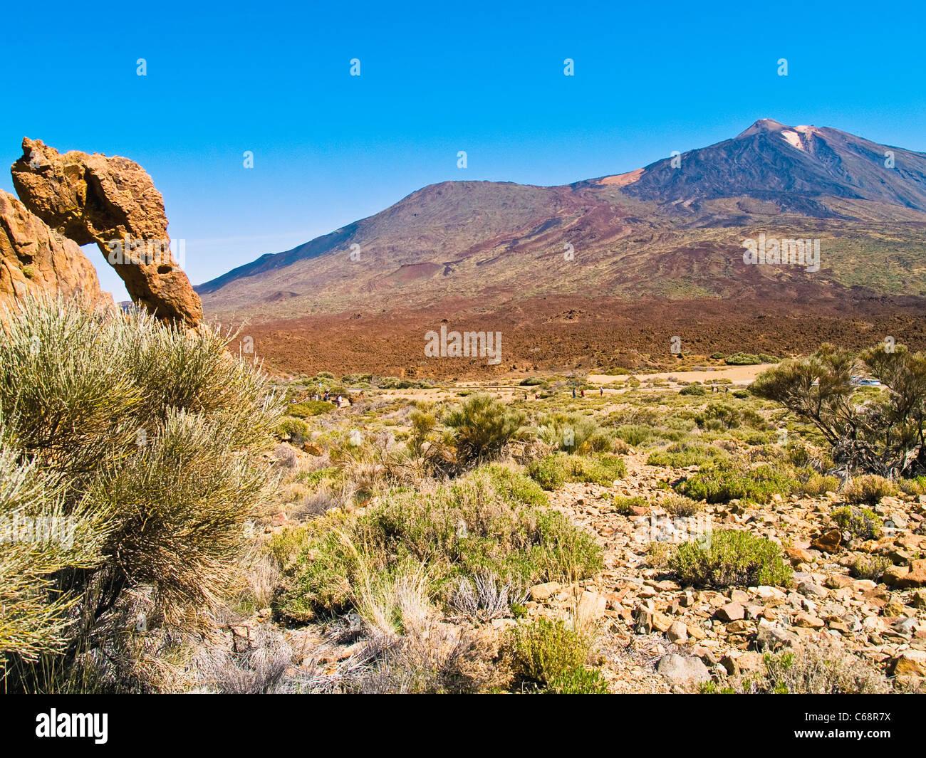 Rock und den Teide Nationalpark Teneriffa, Kanarische Inseln-Spanien-Europa Stockbild