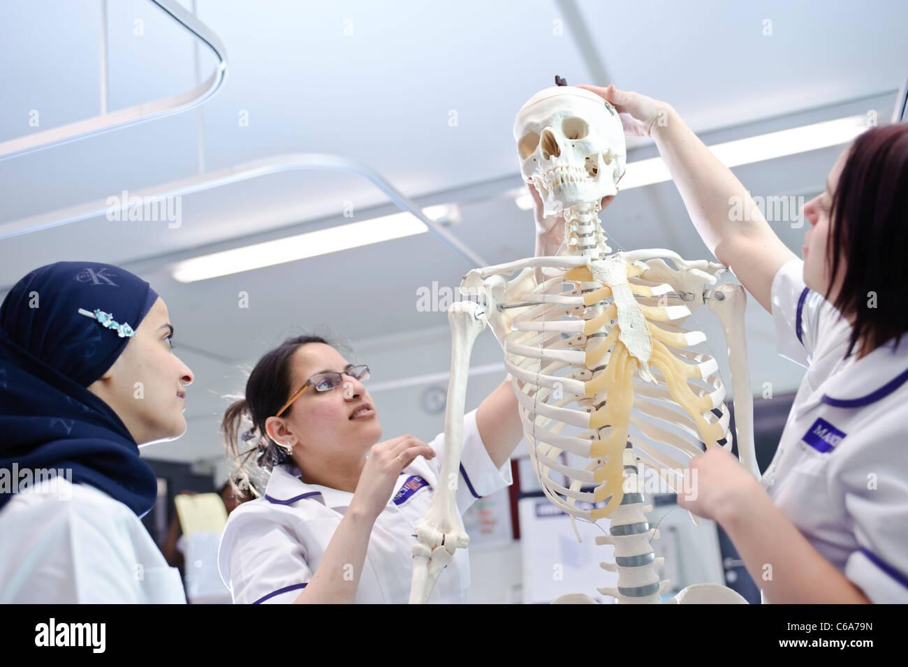 weiblichen Mischlinge Universität Krankenpflege Lernschwestern mit Dummy-menschliche anatomische Modell Skelett Stockbild