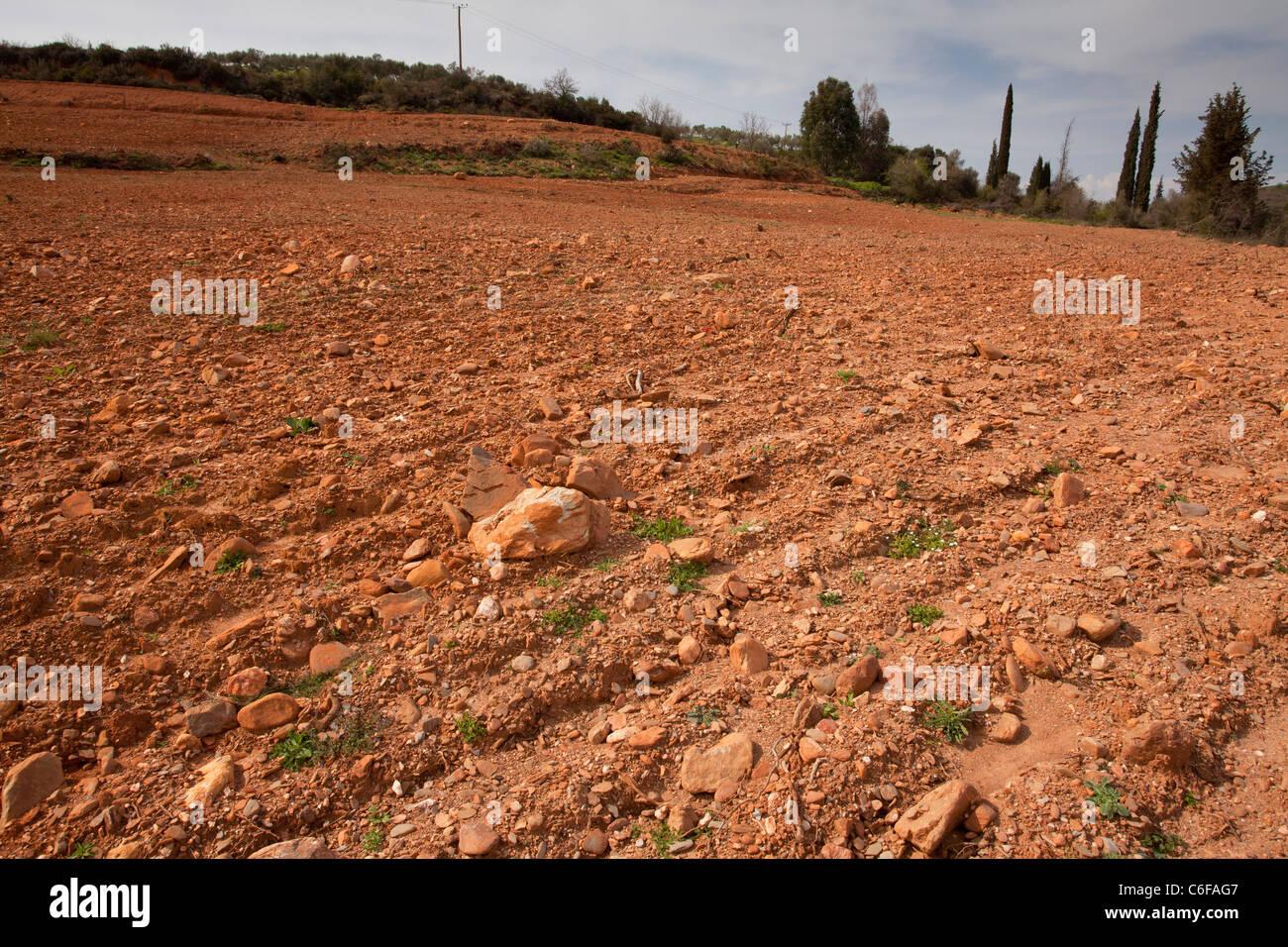Blumenreiche Website, mit vielen endemischen Arten, durch Pflügen zerstört; Mani Halbinsel, Griechenland. Stockbild