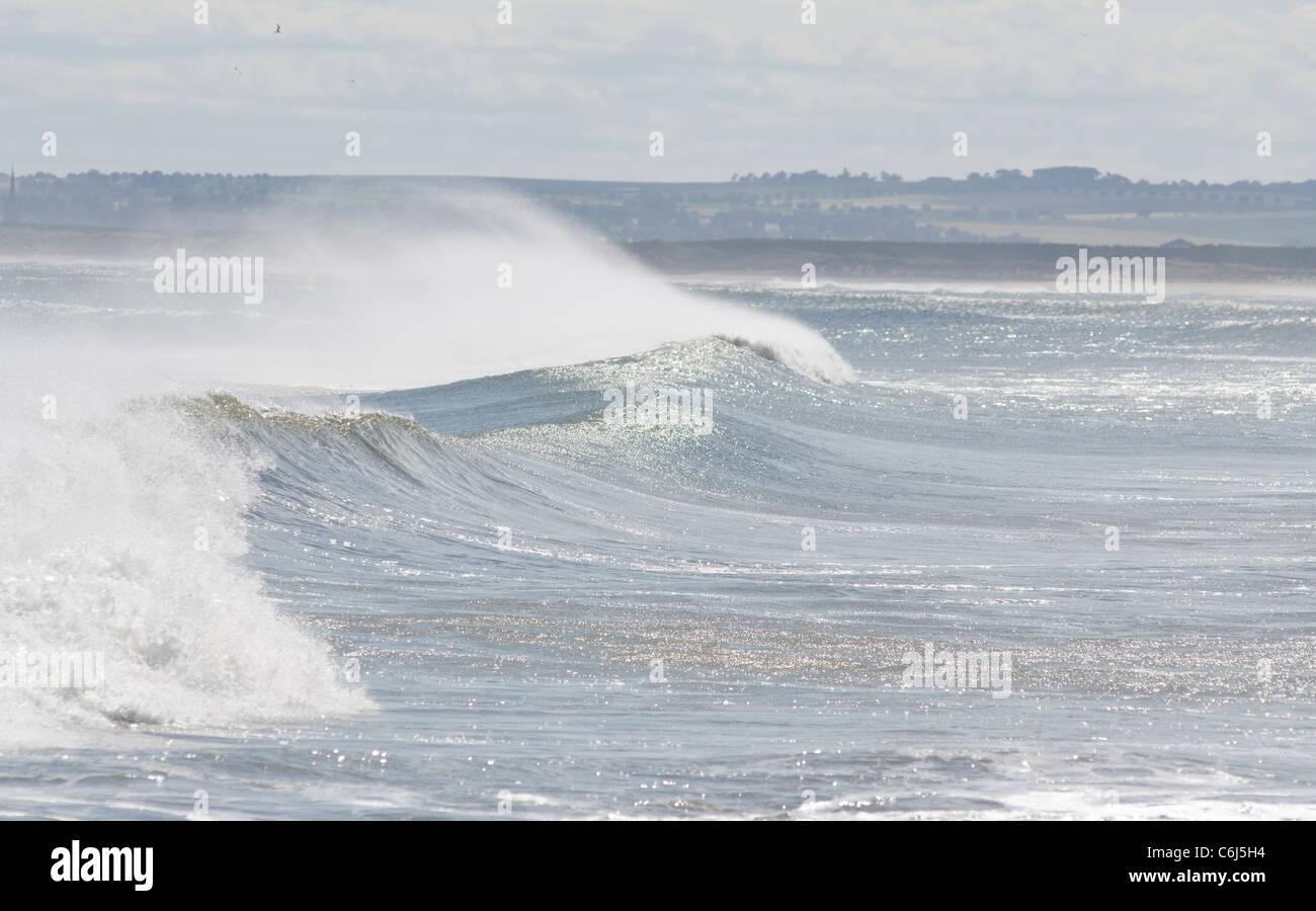 Surf und Sea Spray kommen aus der Nordsee bei St. Cyrus Bay Stockbild