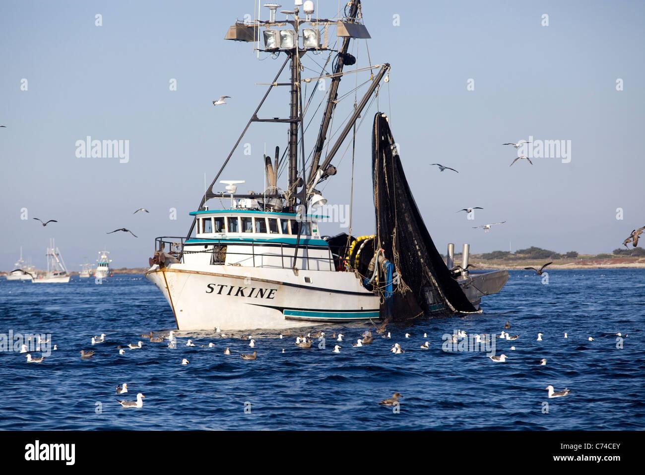 Ein Angeln Boot Heads aus Monterey Harbor - California. Stockbild