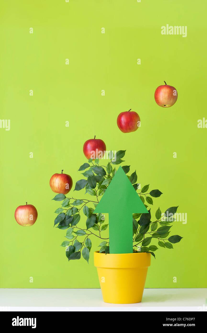Diagramm von Äpfeln und Pfeil nach oben gemacht Stockbild