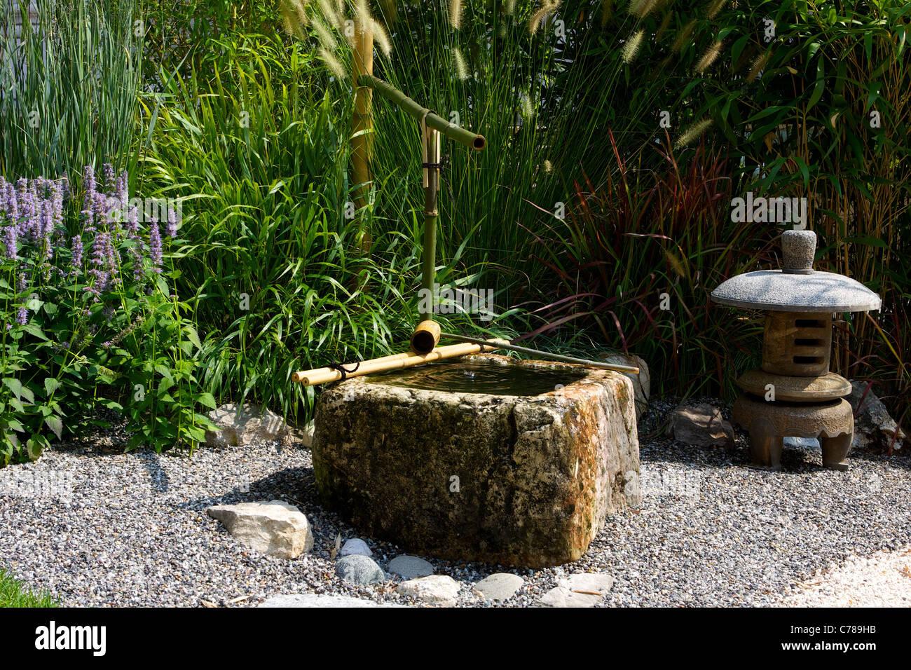 Japanischer Garten Mit Weg Aus Kies, Pflanzen, Wasser, Bambus