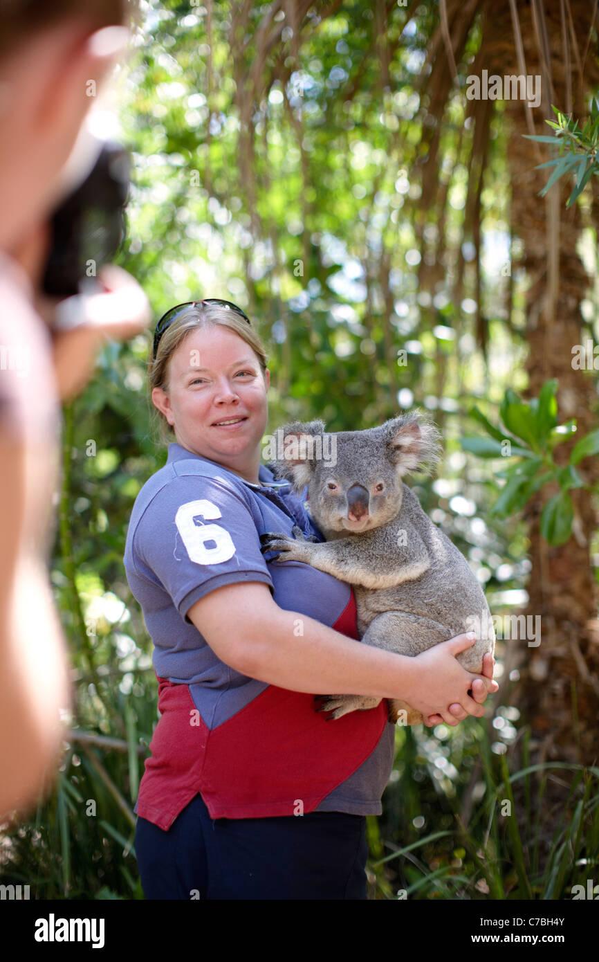 Touristen halten einen Koala im Bungalow Bay Koala Dorf Horseshoe Bay Nordküste von magnetischen Insel Great Stockbild