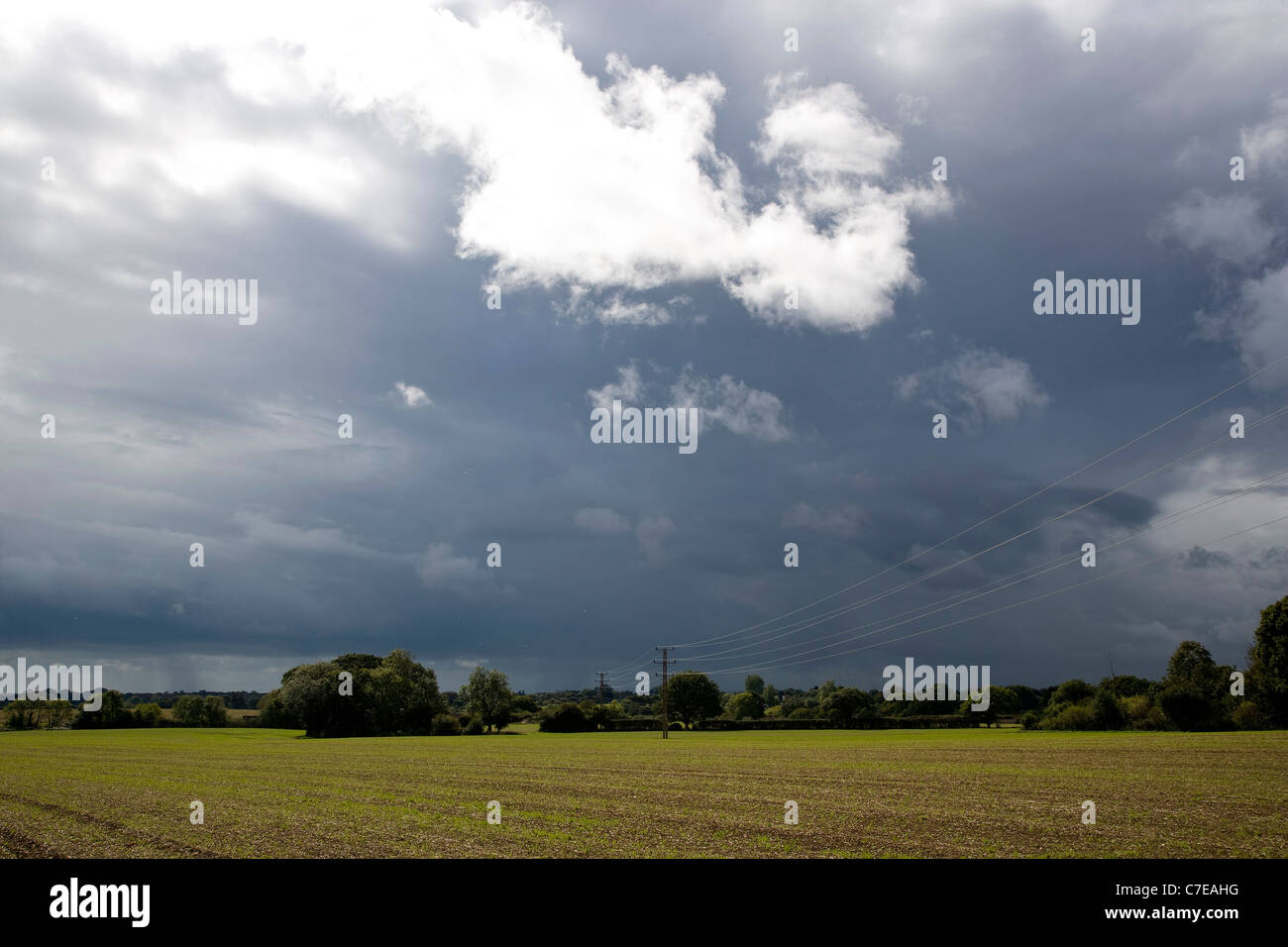 Tortington Stockfotos & Tortington Bilder - Alamy