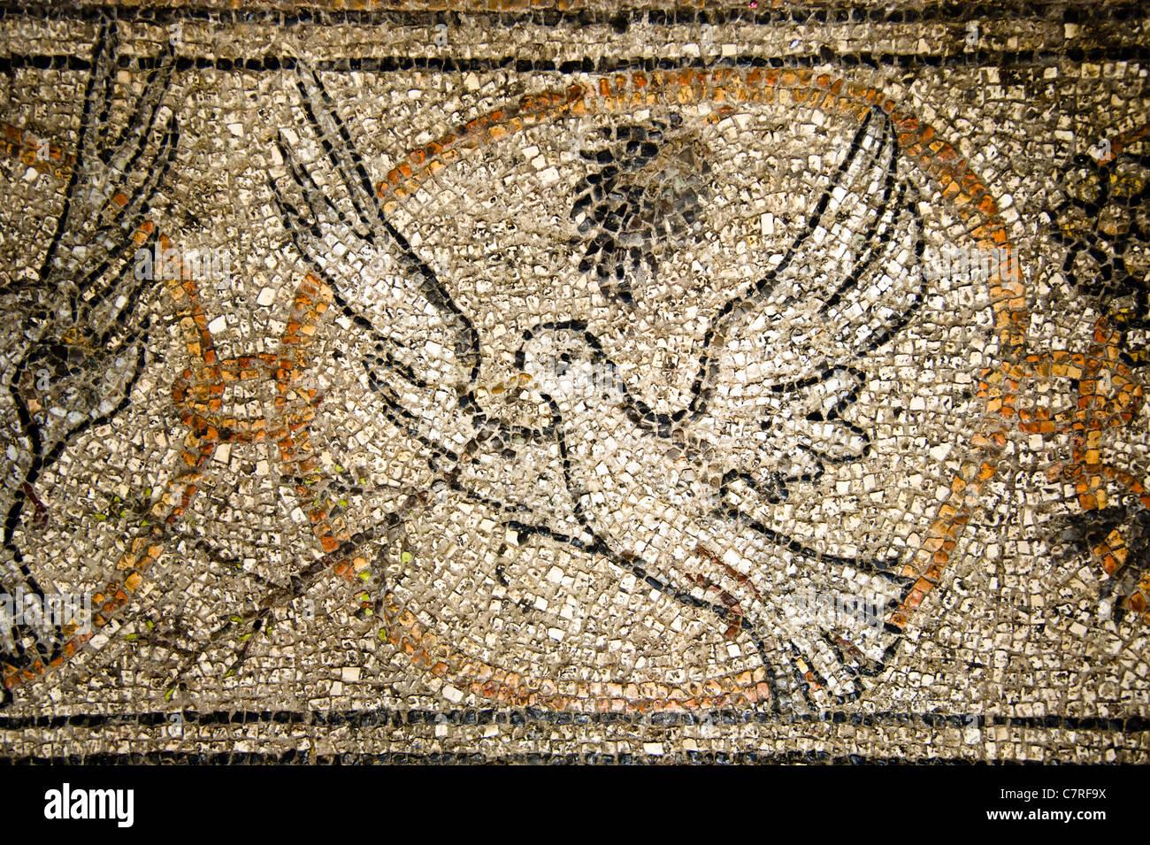 Mosaik einer Taube mit einem Olivenzweig auf dem Boden der Kirche des Heiligen Grabes, Jerusalem. Stockbild