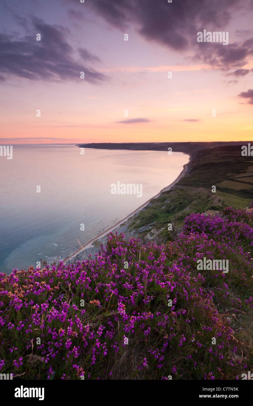 Twilight von Golden Cap, Blick nach Westen über die Küste von Dorset. Sommer (Juli) 2011. Stockbild