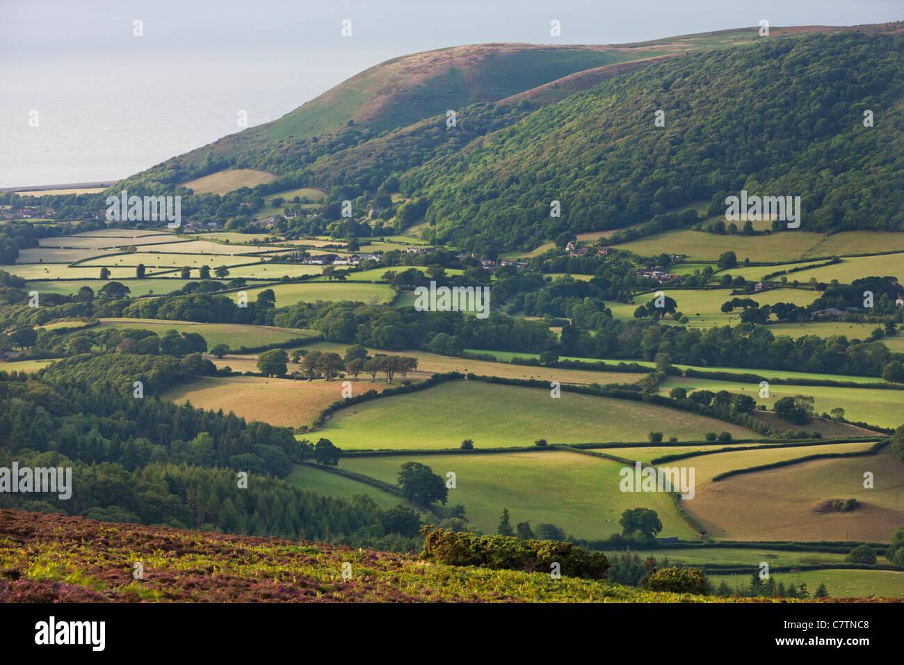 Sanfte Landschaft und Küste im Vale of Porlock, Exmoor, Somerset, England. Sommer (August) 2011. Stockbild